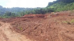 ကေလာသ သဘာ၀ထိန်းသိမ်းရေးနယ်မြေအတွင်းကျောက်မိုင်းပြုလုပ်ရန်ရှင်းလင်းထားစဉ်(Eleven News)