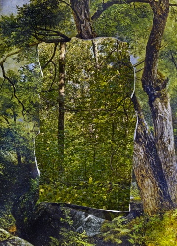 Abelardo Morell, Cutout In Print With Trees Behind, 2013, Inkjet Print.