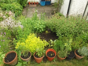 herb patch may