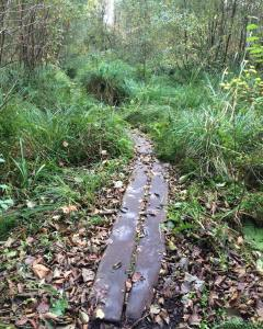 replica of Iron Age track
