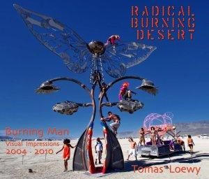 Radical Burning Desert by Tomas Loewy