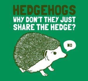 hedgehogs acf