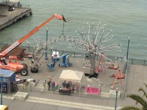 soma crane install