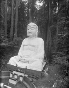 BohemianGrove5 buddha
