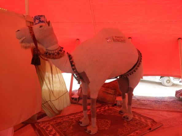 2014 camel alvin gaela
