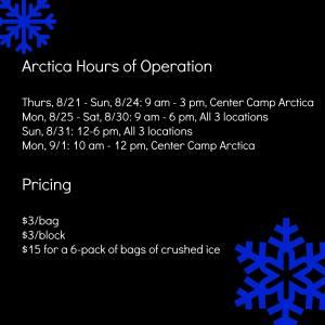 arctica prices