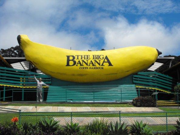 5590932-Big_Banana-0