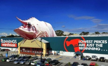big prawn bunnings