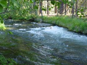 Hat Creek