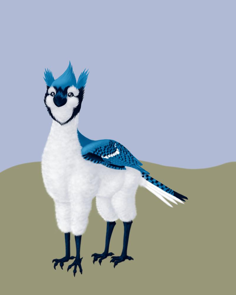 The Alpaca-Bluejay