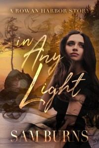 Book Cover: In Any Light