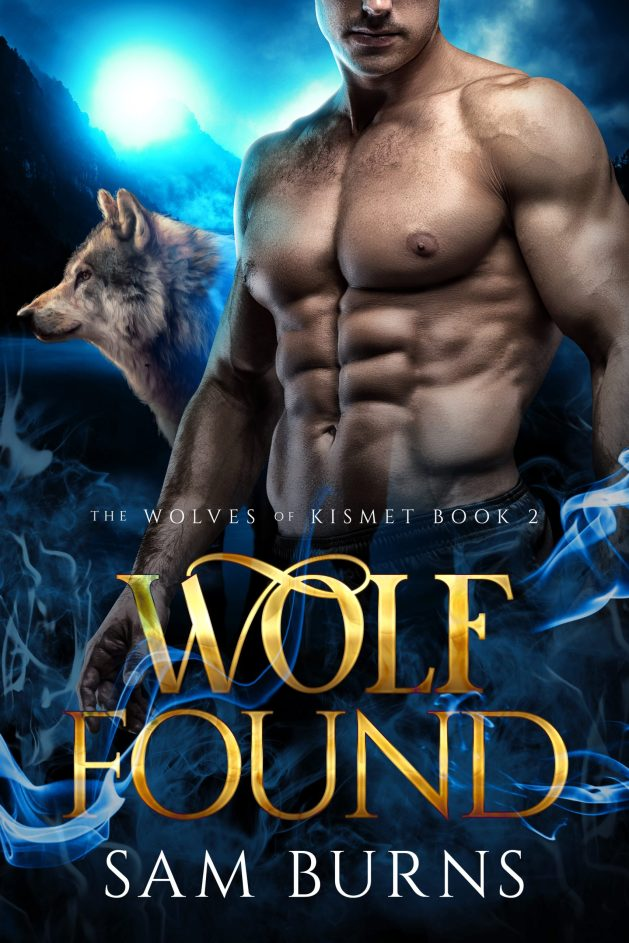 Book Cover: Wolf Found