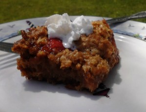 Guest Blogger: Sweet and Sour Summer Dessert
