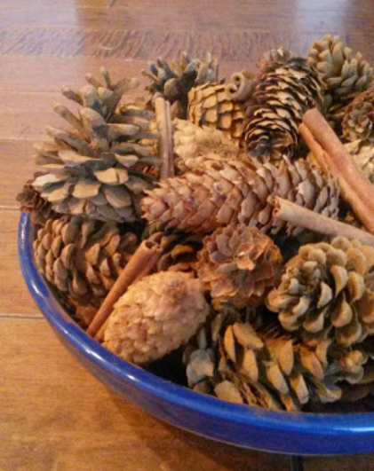 cinnamon pinecone recipe