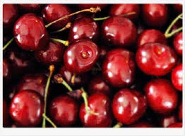 tart cherry