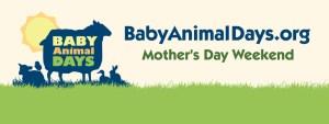 baby animal days