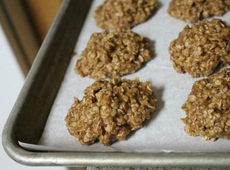 fart cookies