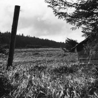 Haida Gwaii Landscapes