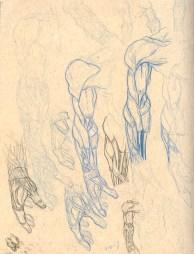 Anatomy_Sketch02