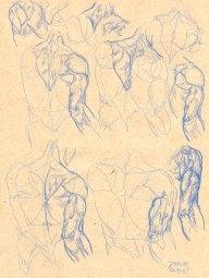 Anatomy_Sketch04