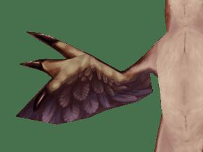 Raptor_Screen_05