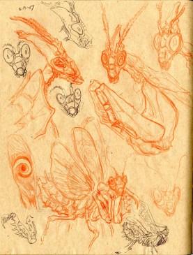 Mantis Knight Sketch 2