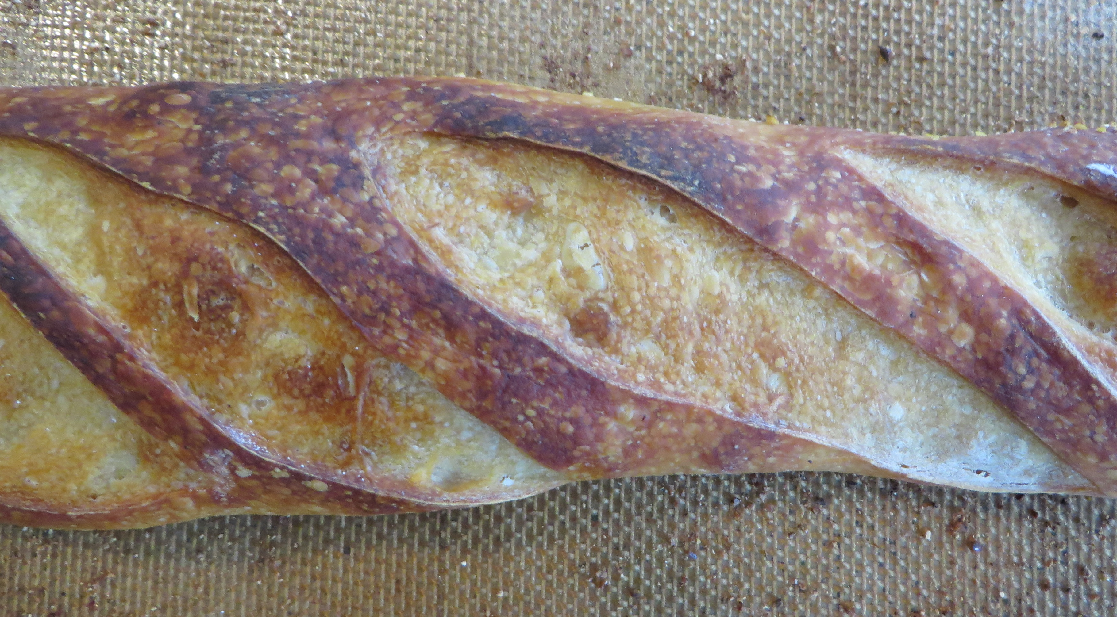Steamed baguette closeup & How to steam bread in a home oven - Burnt My Fingers