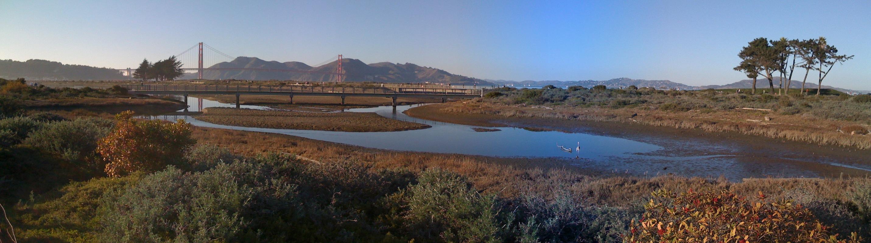chrissy-field-marsh