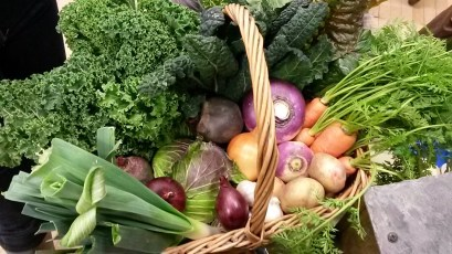 Typical contents of our veg box
