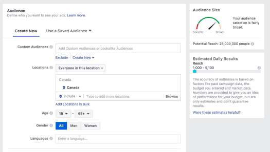 Facebook Ads Manager Target Audience