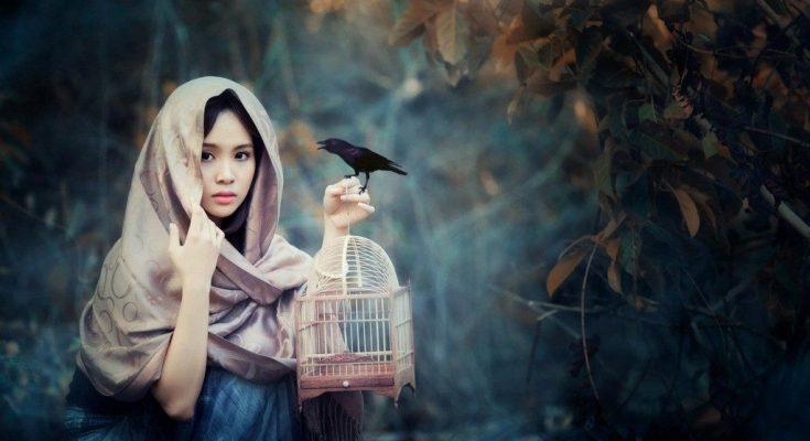Pecinta burung
