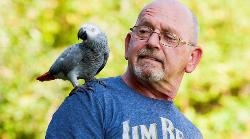 Tiba-Tiba Pikun Setelah Memelihara Burung, Mungkin Anda Terkena Penyakit Langka