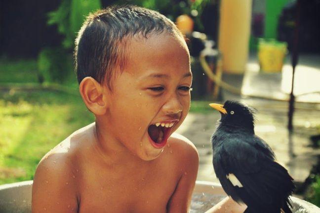 Revo senang ditemani oleh Bulbul (ida-nurlaila.blogspot.co.id)