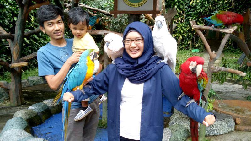 5 Jenis Burung Peliharaan yang Cocok Untuk Keluarga dan Anak Kecil