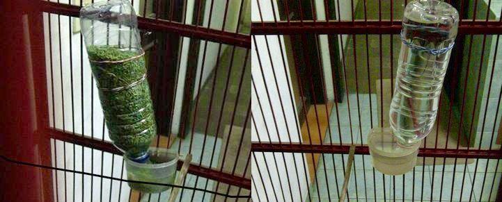 Tempat pakan dan minum burung otomatis (gembala-news.blogspot.co.id)