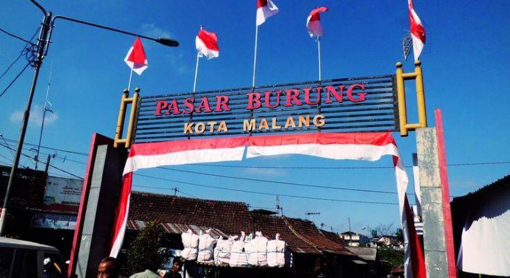 Pasar burung Splendid Malang (ariantifebi.blogspot.com)