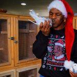 Kisah Mike Tyson memelihara burung Merpati (instagram.com)