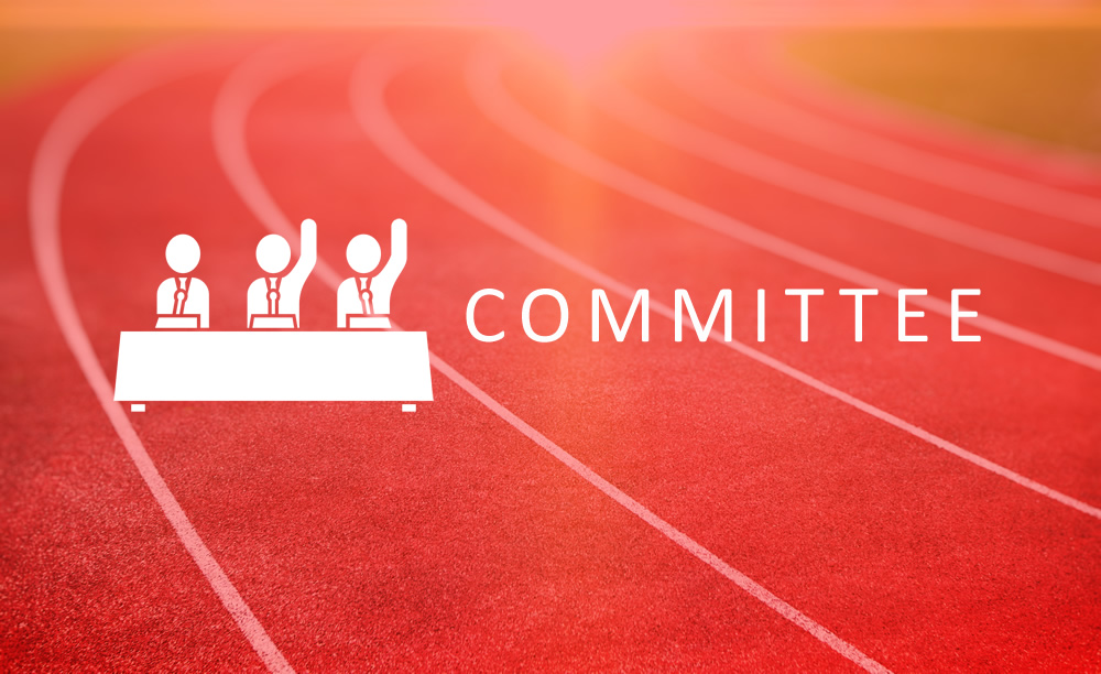 Committee Roles for 2017/18