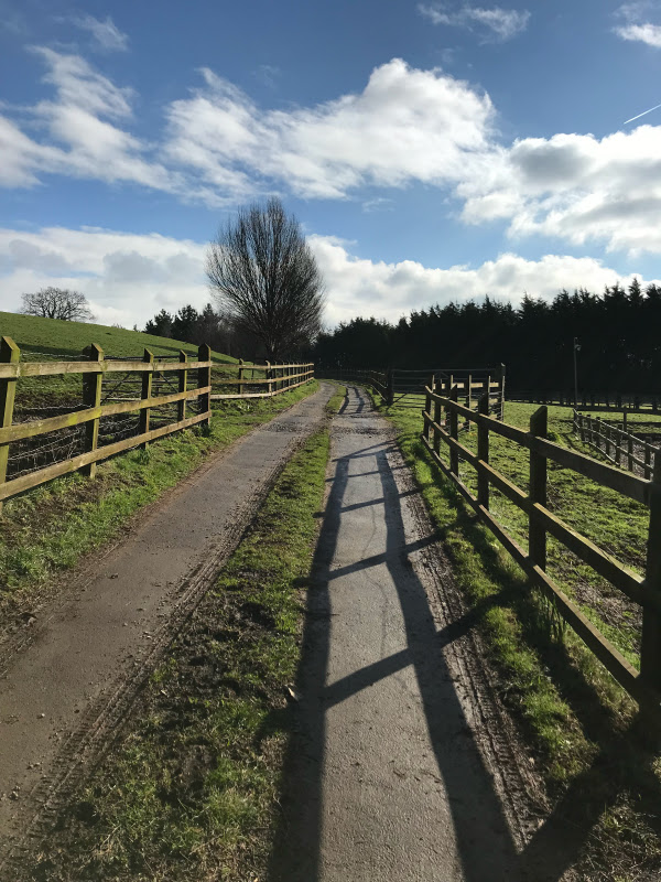Bury Hill Farm Bristol Driveway