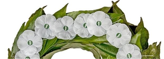 White Poppy Wreath Laying
