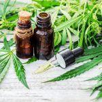 Tato akcie má solidně našlápnuto, aby se stala vítězem legalizace marihuany ve Virginii