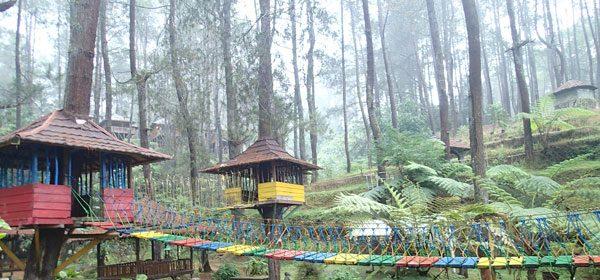 Wisata Alam Grafika Cikole Lembang