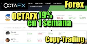 Lee más sobre el artículo OctaFX  19% en 1 semana en Copy-Trading de Forex