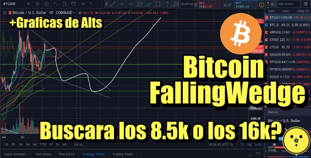 En este momento estás viendo Bitcoin ira a probar los 8.5k? o reacciona para ir por los 16k?