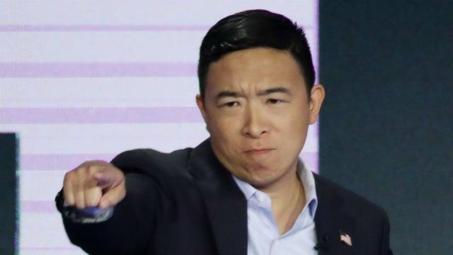 En este momento estás viendo Elon Musk apoya al candidato presidencial demócrata Andrew Yang (Pro-BTC)