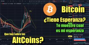 Lee más sobre el artículo Bitcoin, tiene esperanza aun? Que hay sobre las AltCoins?
