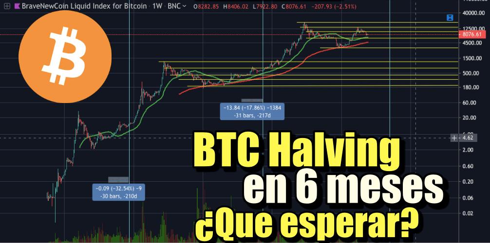 En este momento estás viendo Bitcoin a 6 meses de su Halving, que podemos esperar?