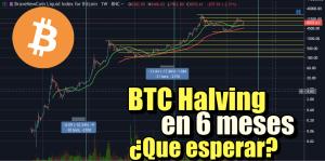 Lee más sobre el artículo Bitcoin a 6 meses de su Halving, que podemos esperar?