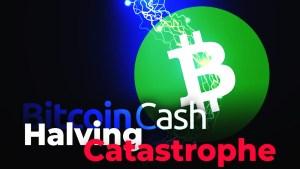 Lee más sobre el artículo HALVING DE BITCOIN CASH (BCH) SERÁ «CATASTRÓFICA»