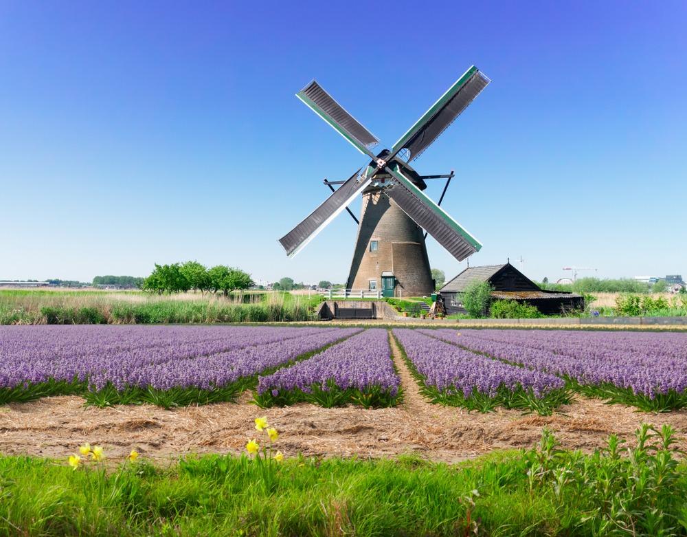 En este momento estás viendo Países Bajos planea castigar a los estafadores criptográficos con hasta 6 años de cárcel
